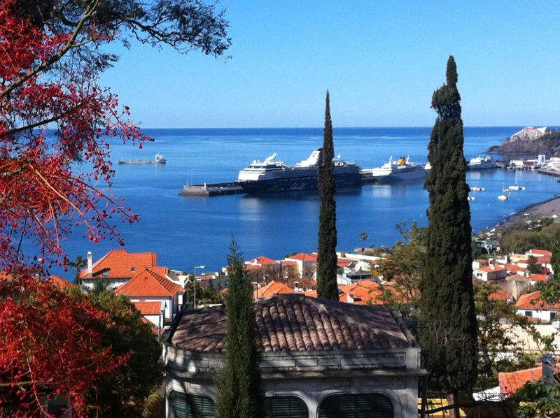 Old Town Funchal Location