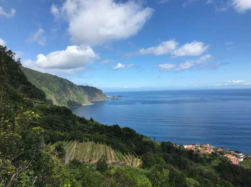 Your base to discover Madeira